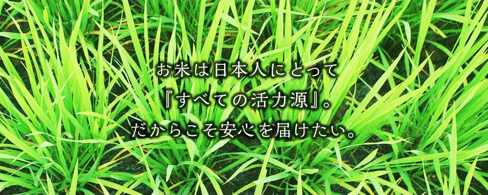 お米は日本人にとって『すべての活力源』。だからこそ安心を届けたい。